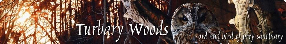 Turbary Woods