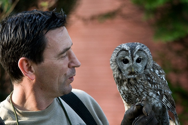 Andy and Vic the Tawny Owl