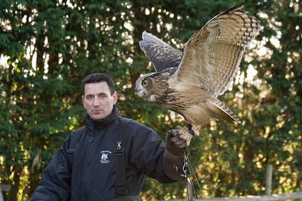 Andy with Owl