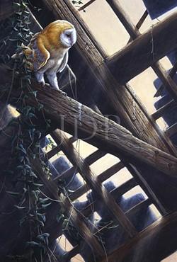Jeremy Paul - Artist