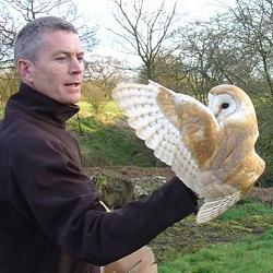 Flood and Owls - 11-09-2008