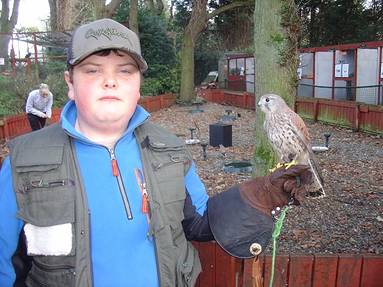 Rory and the rescued Kestrel