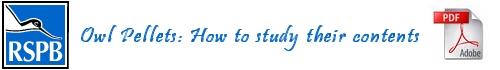 RSPB Owl Pellet PDF Factsheet