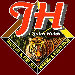 John Hebb - Artist